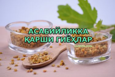 Асабийликка қарши гиёҳлар - Asabiylikka qarshi giyohlar